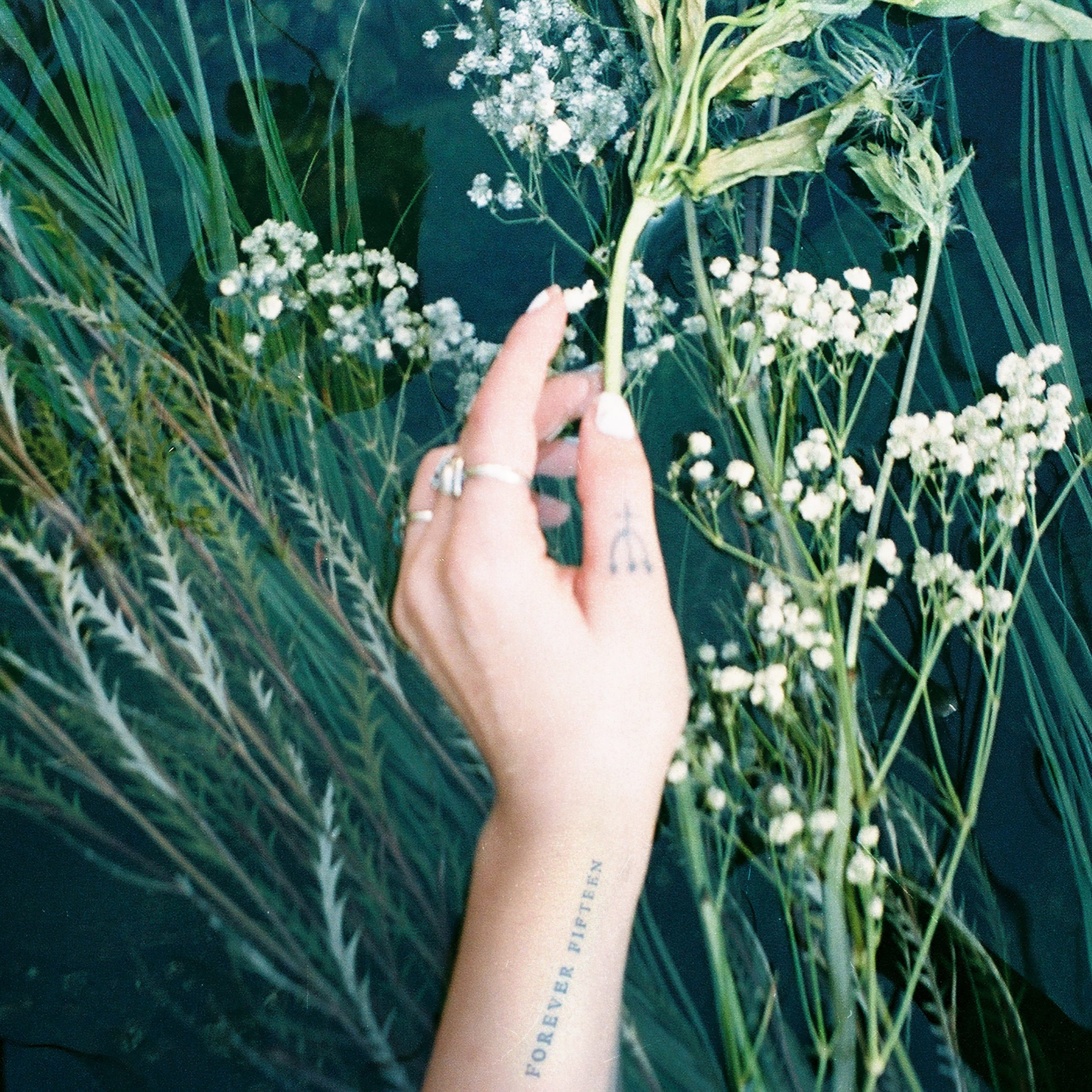 Mothica – Forever Fifteen