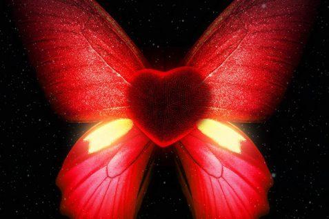 DYFL Featuring Kay Bridges – Butterflies
